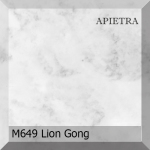 m649_lion_gong